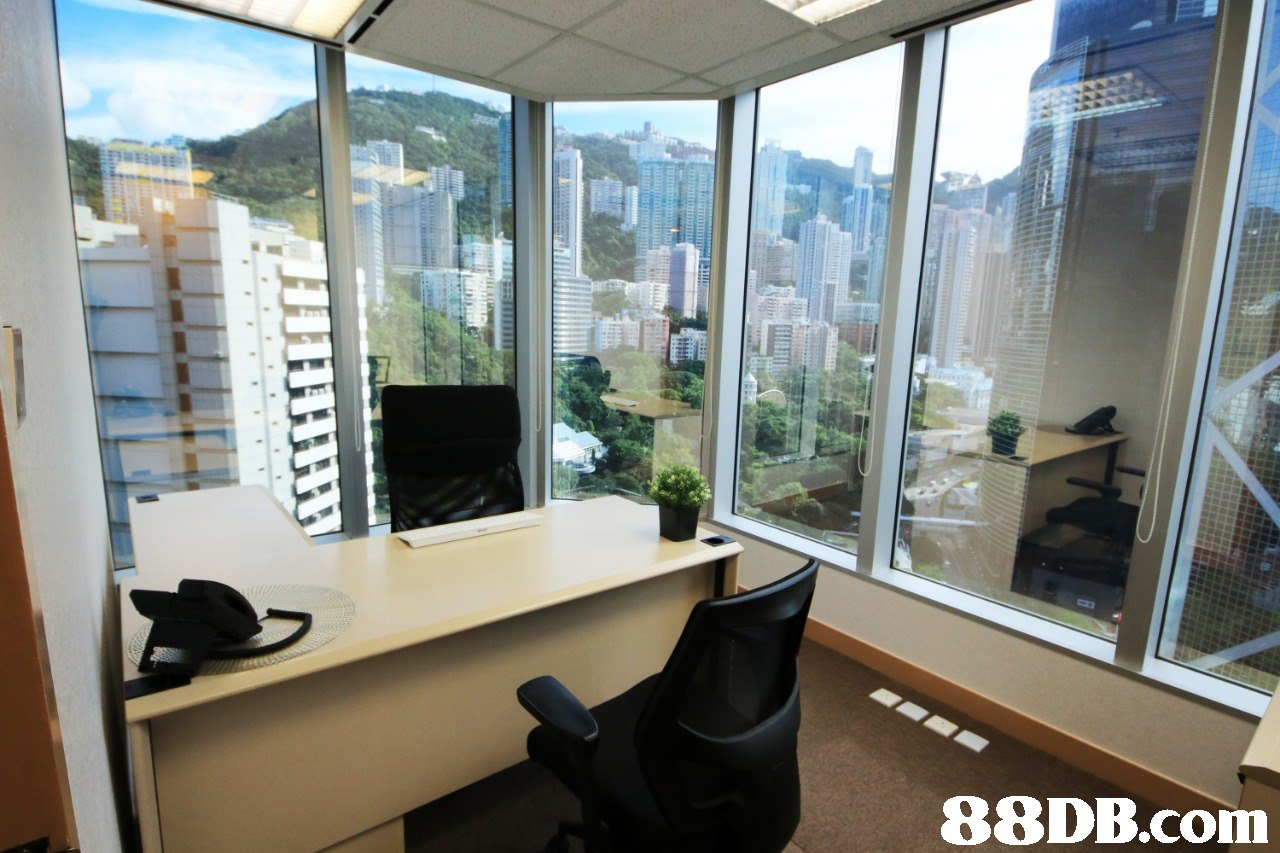 property,window,real estate,office,