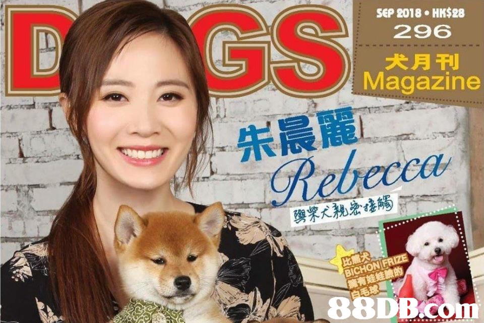 С GS.an. SEP 2018 HK$28 296 犬月刊 Magazine 朱晨麗 Rebecca BICHON PRIZE 88DB.COM  dog breed group,dog,dog like mammal,photo caption,dog breed