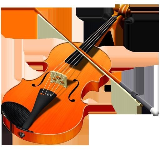 musical instrument,violin,violin family,string instrument,viola