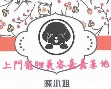 上門和美容嘉嘉基地 陳小姐  text,mammal,pink,cartoon,vertebrate