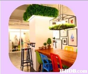 B.com  property,home,interior design,real estate,area