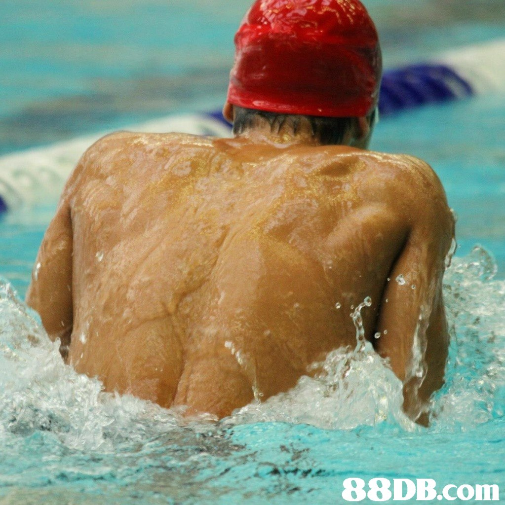 swimming,swimmer,freestyle swimming,water sport,recreation