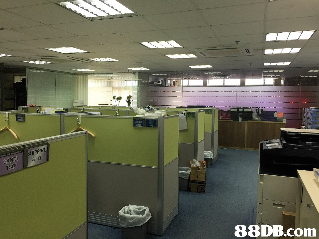 CANDY SHIPPING TSO   office,product,