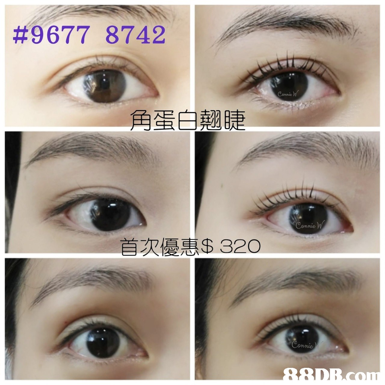 #9677 8742 角蛋白翹睫 首次優惠$ 320  eyebrow,eyelash,eye,cosmetics,eye shadow