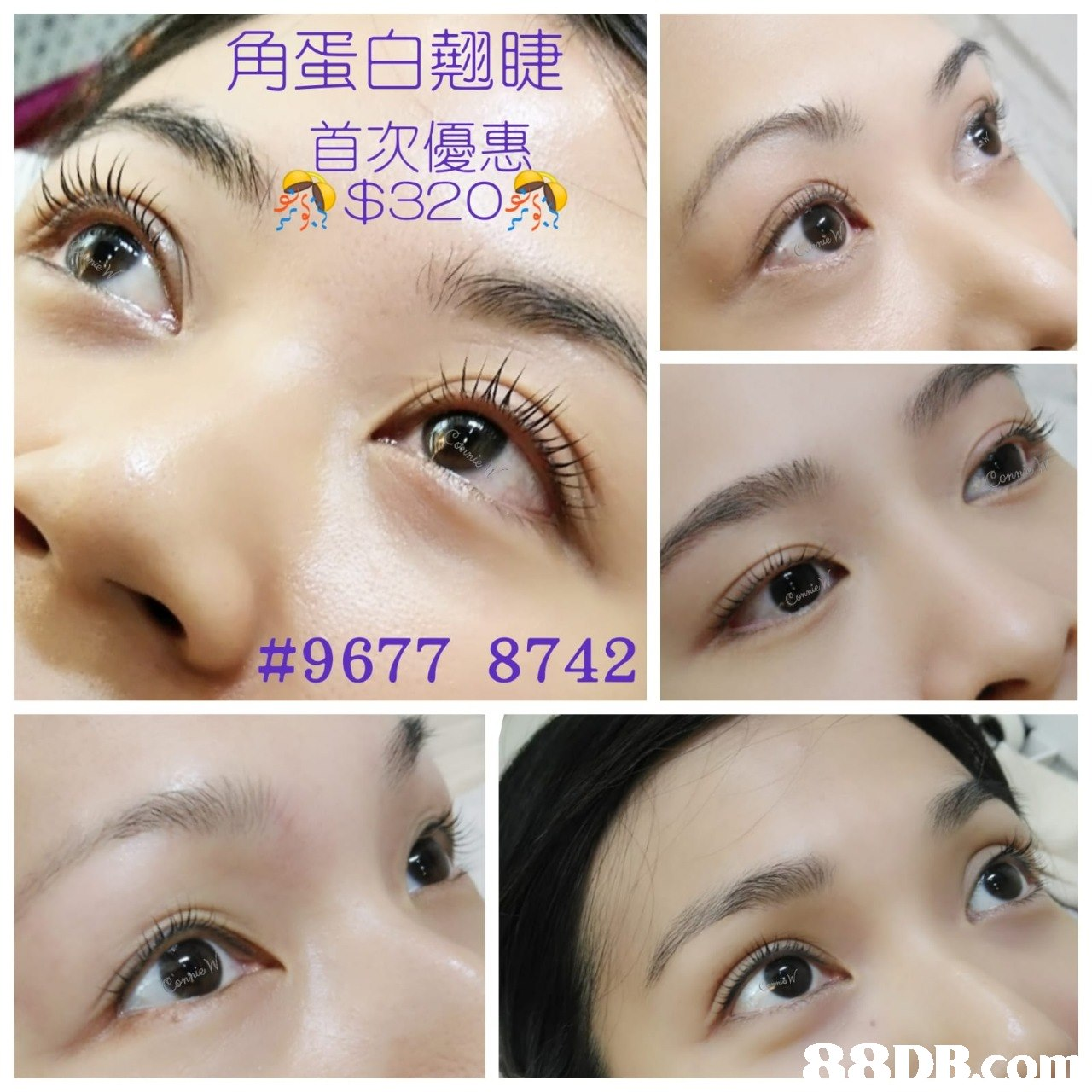 角蛋白翹睫 首双優惠 #9677 8742  eyebrow,eyelash,nose,eye,forehead