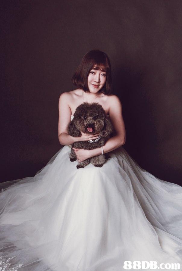 gown,photograph,wedding dress,bride,bridal clothing