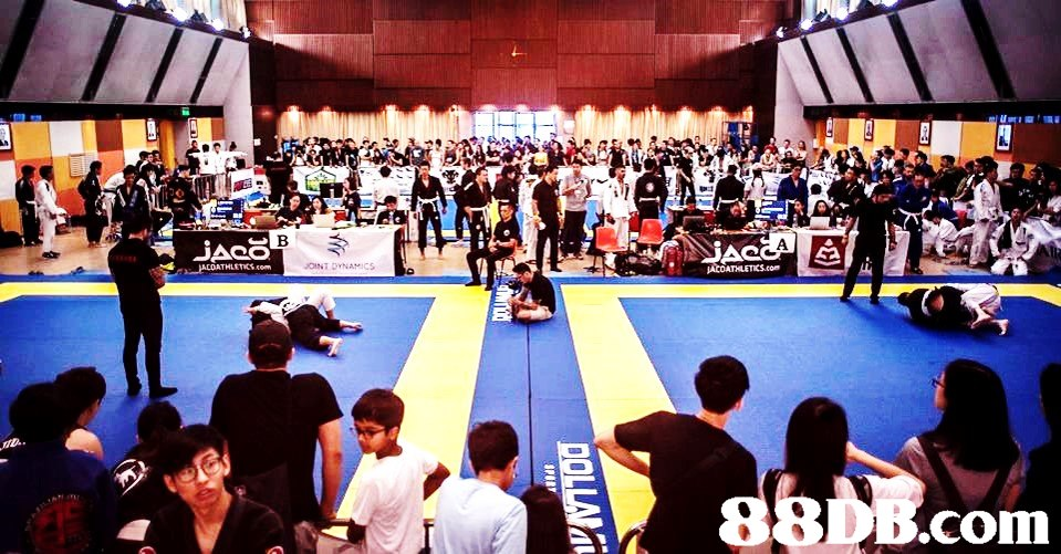 .com  indoor games and sports,striking combat sports,contact sport,sport venue,combat sport