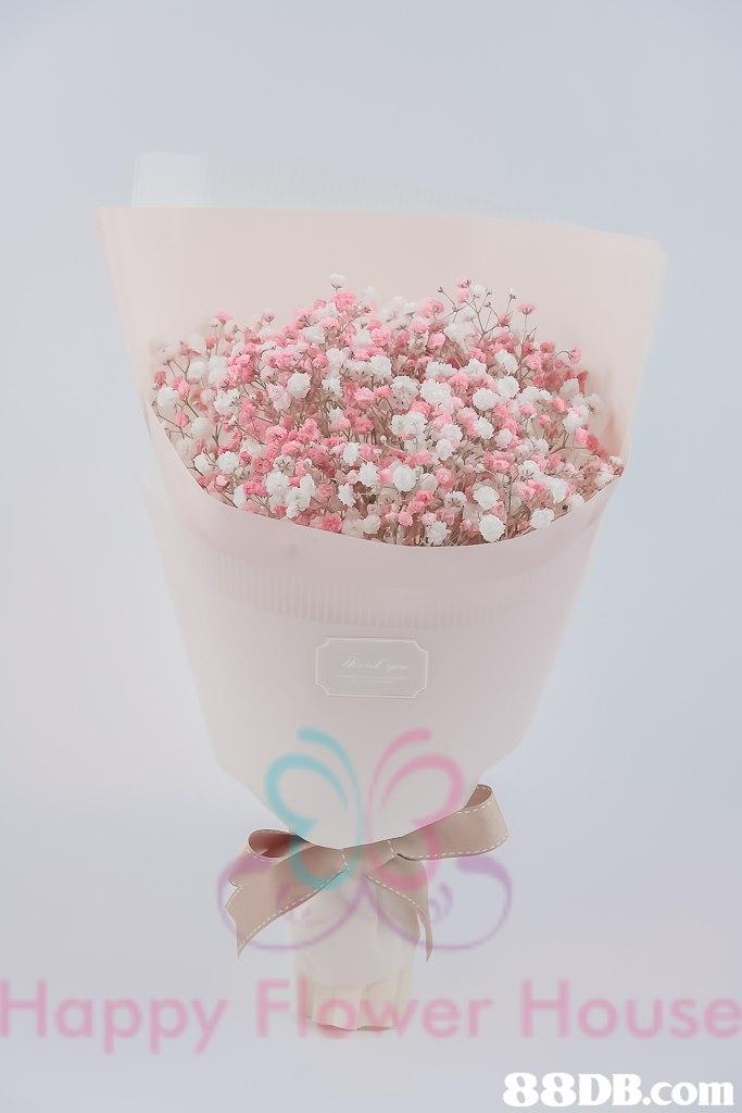 Happy Flower House 88DB.com  pink