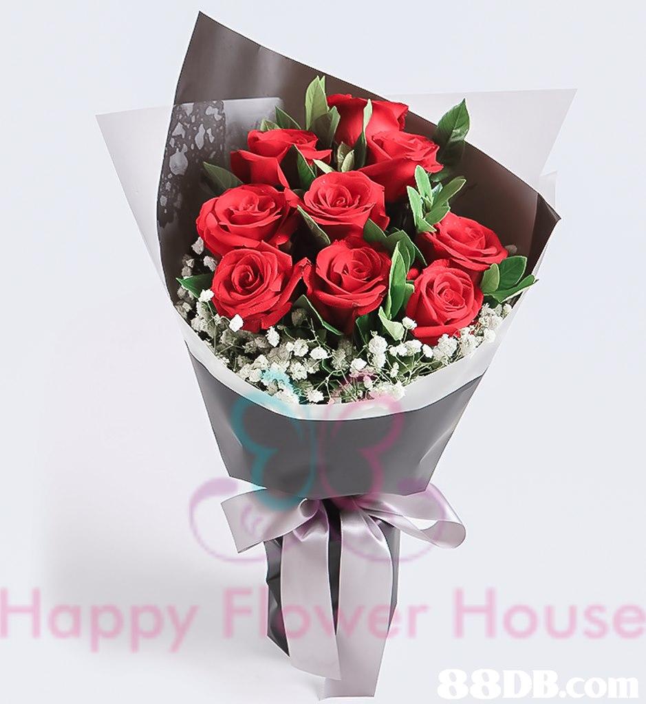 oW HoUSe  flower