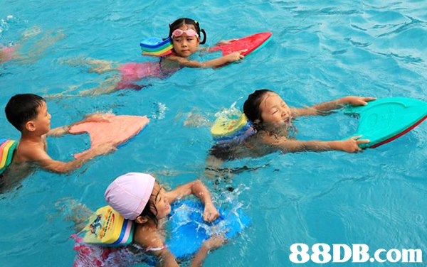 88DB.com  leisure