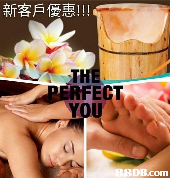 新客戶優惠!!! TH RFECT . YOU 8DB.com  massage