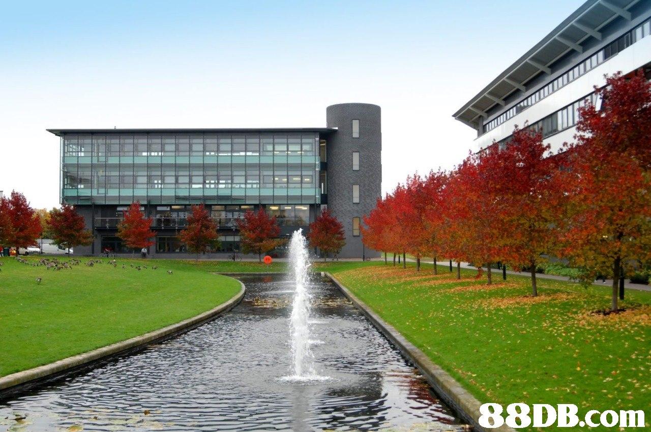 88DB.com  public space