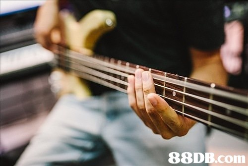 88DB.com  bass guitar
