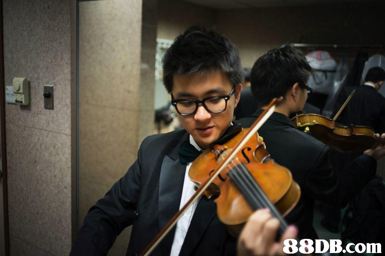 88DB.com  violin