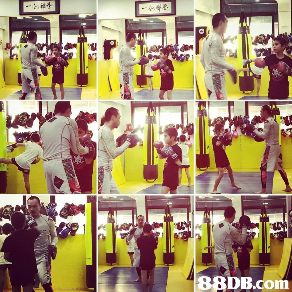 88DB.com  gym