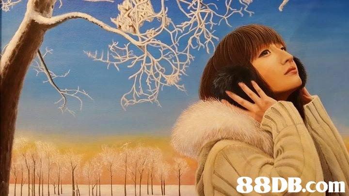 88DB.com  sky