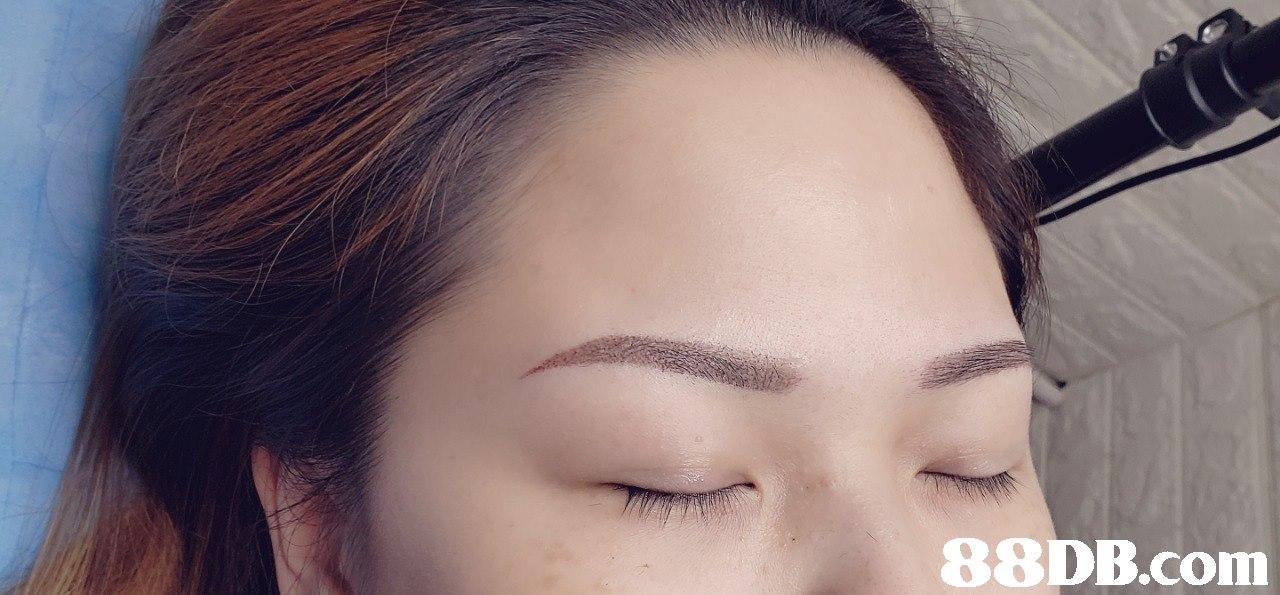 88DB.com  eyebrow