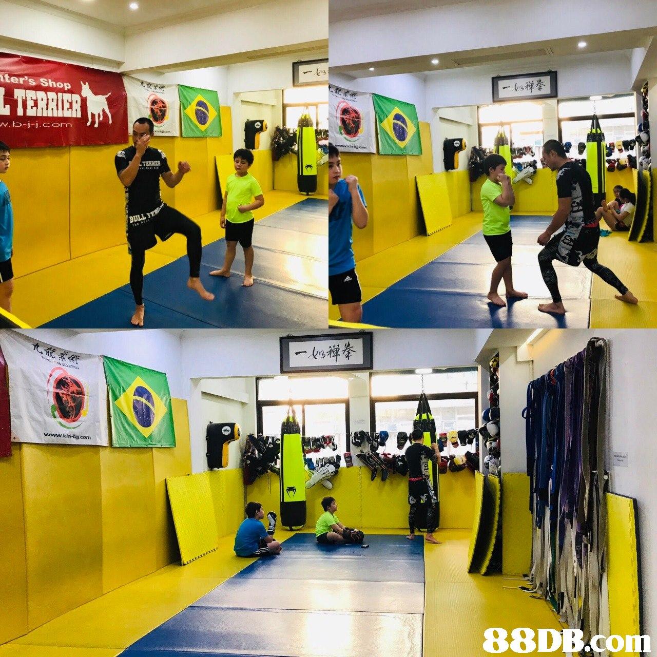 ter's Shop BULL www.kin-bijcom 88DB.com  sport venue