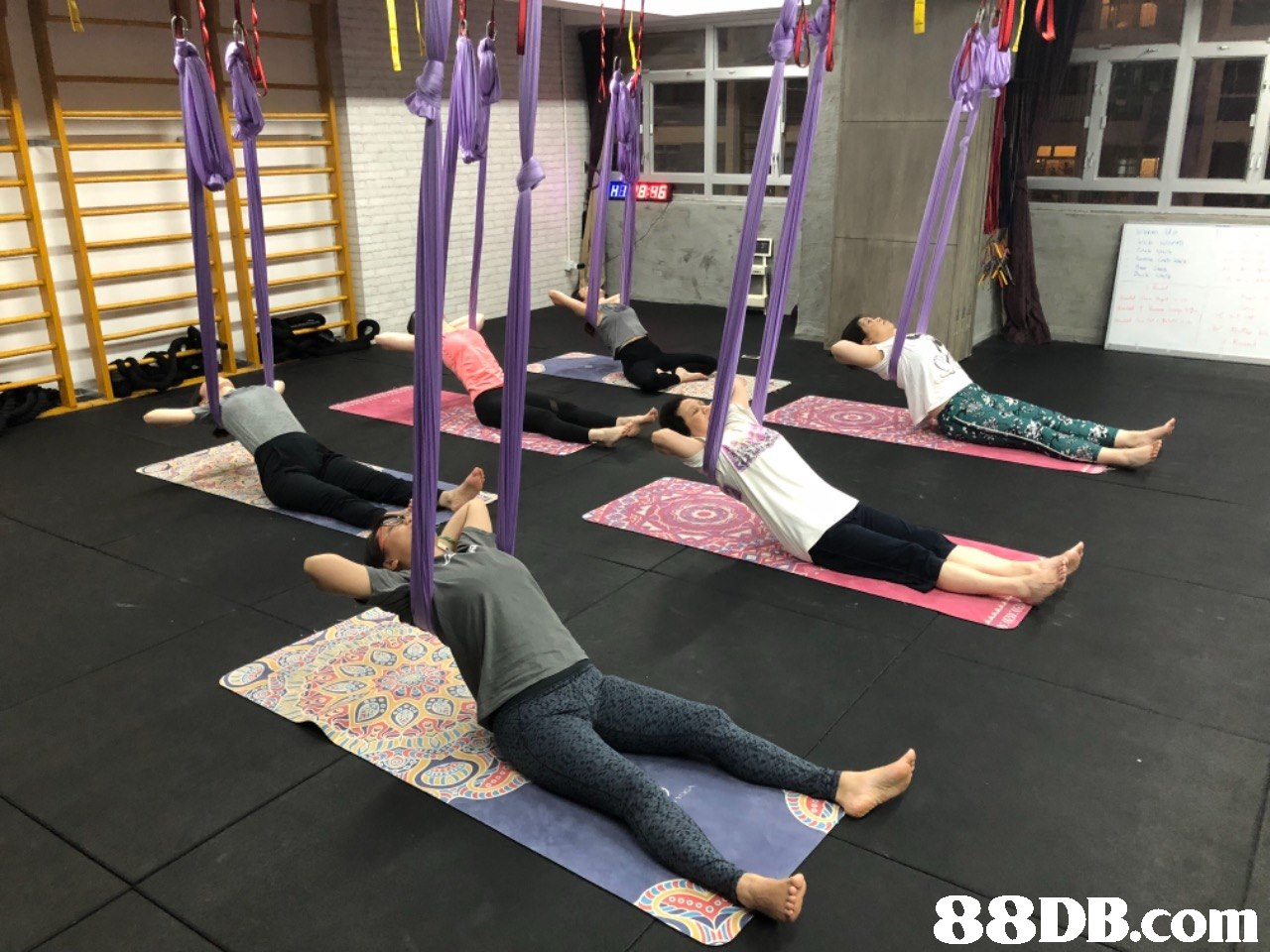 88DB.com  physical fitness