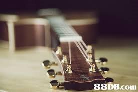 88DB.conm  musical instrument