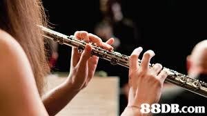 88DB.com  woodwind instrument