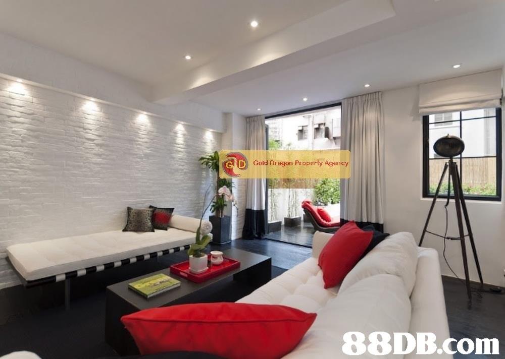 DGold Dragon Property Agency 88DB.com  property