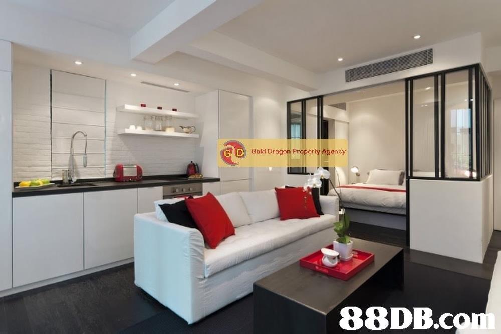 D Gold Dragon Property Agency 88DB.co  property