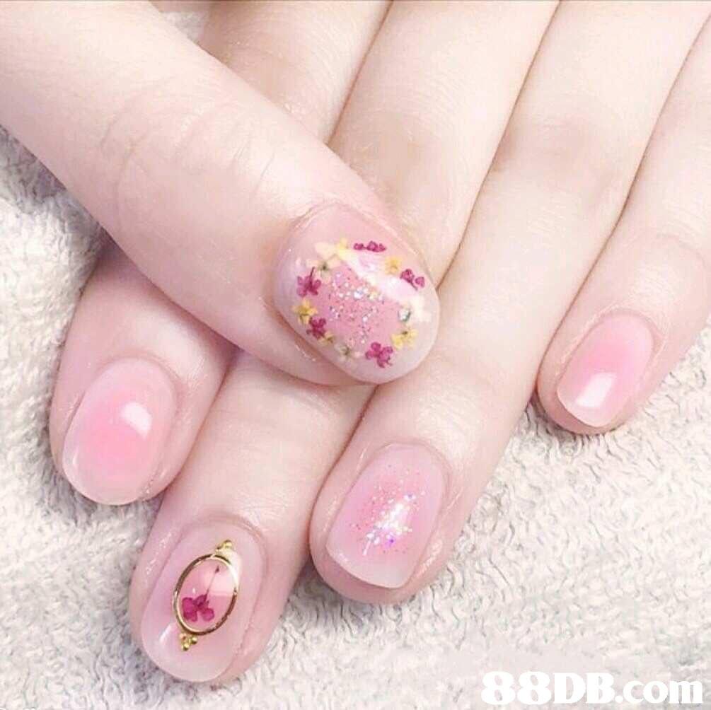 88DB.com  nail