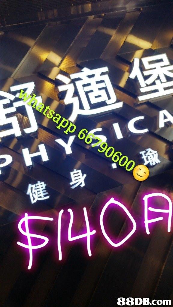 whatsapp 6679 舒適堡 0600 健身 瑜 $140月 88DB.com  neon sign