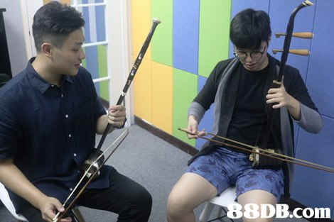 8DB.com  musical instrument