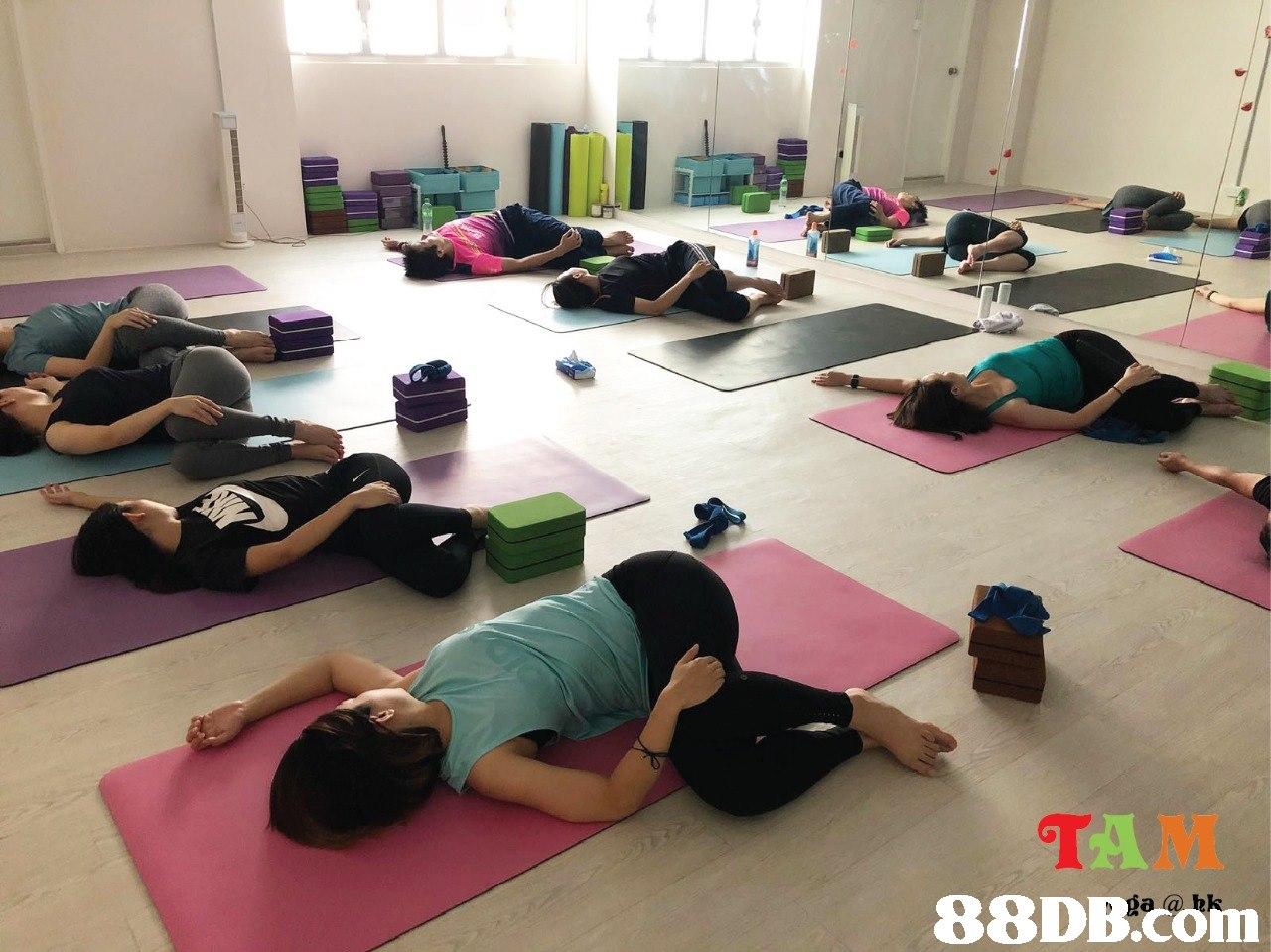 TAM 88DB.Com  physical fitness