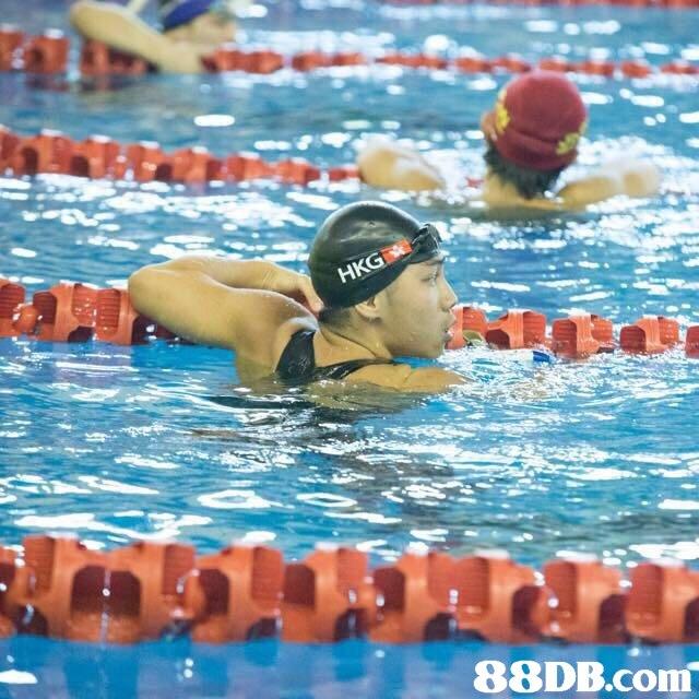 88DB.com  swimming