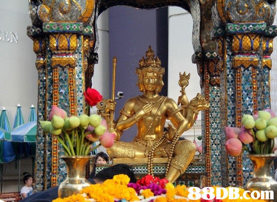 8DB.com  temple