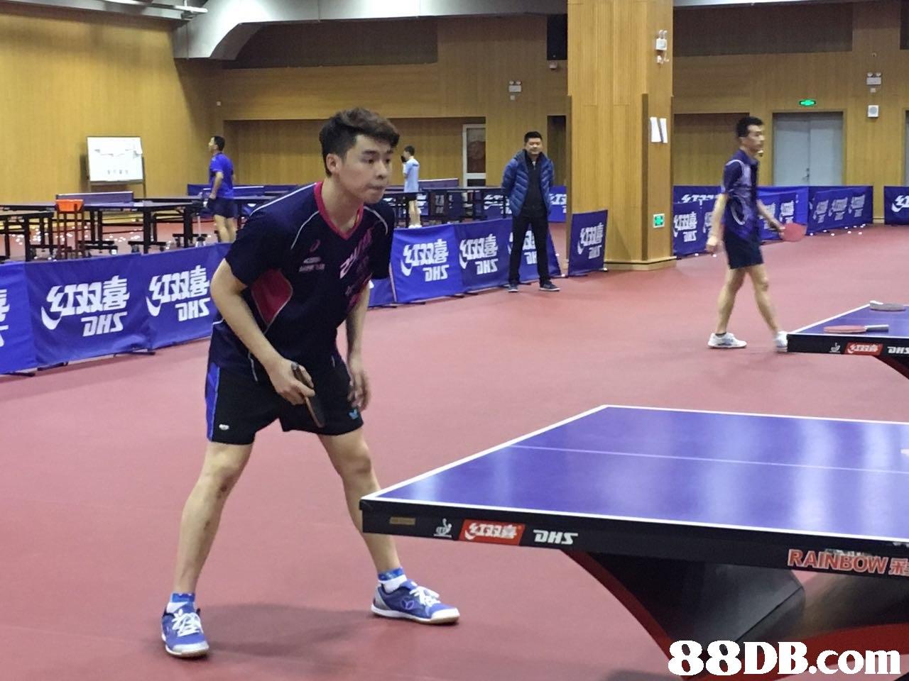 88DB.com  table tennis