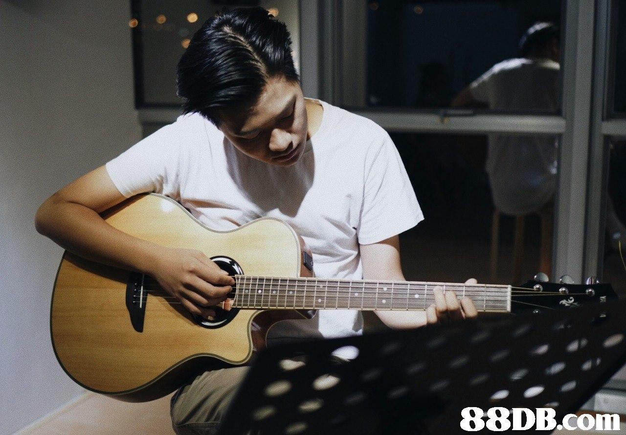 88DB.com  guitar,musical instrument,string instrument,bass guitar,string instrument