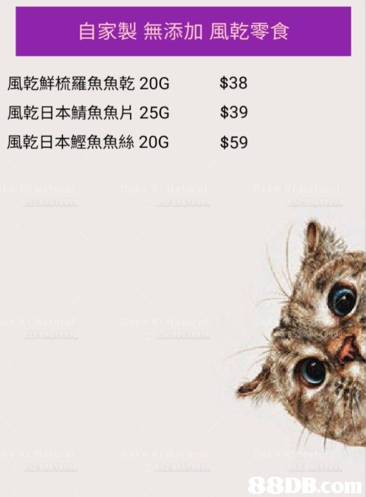 自家製無添加風乾零食 $38 風乾鮮梳羅魚魚乾20G 風乾日本鯖魚魚片25G 風乾日本鰹魚魚絲20G $39 $59  cat,small to medium sized cats,fauna,text,cat like mammal
