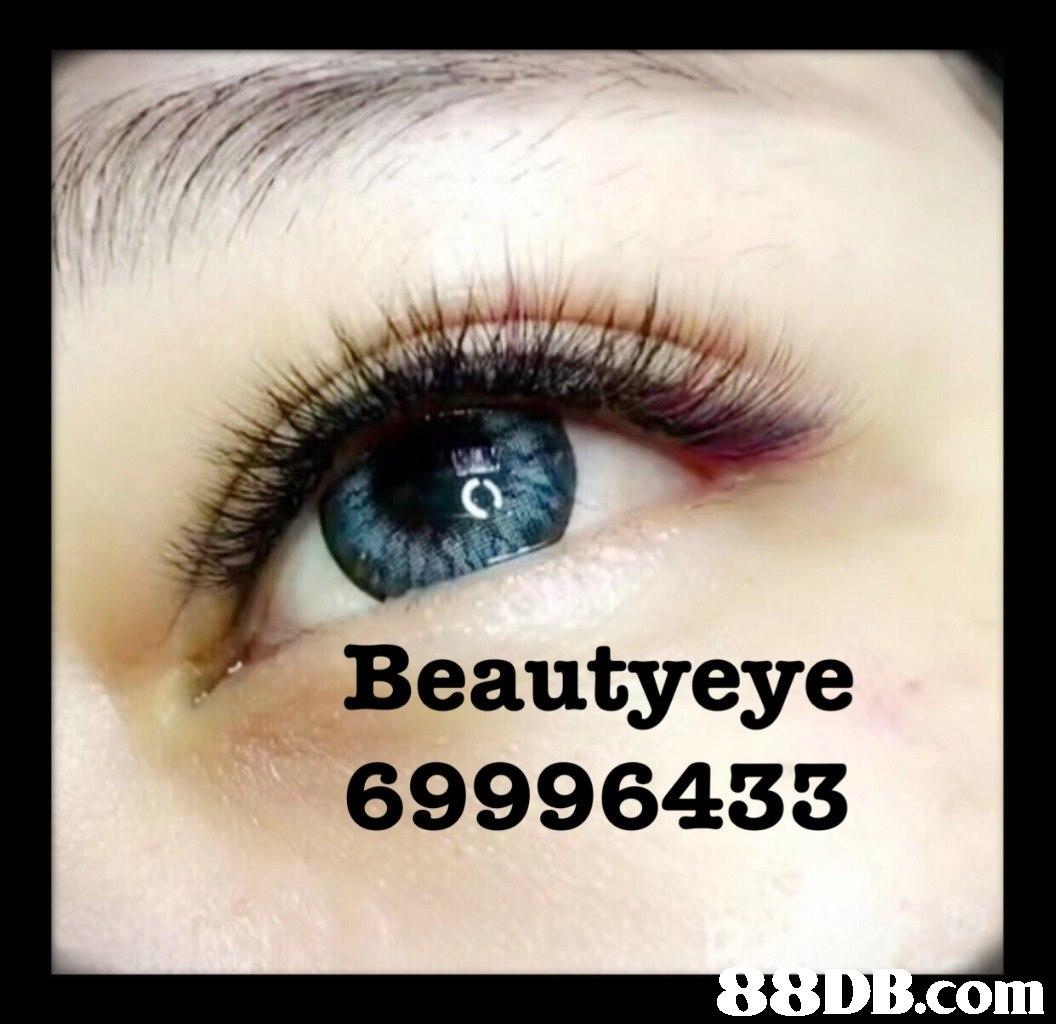 Beautyeye 69996433 .com  eyebrow,eyelash,eye,close up,eye shadow