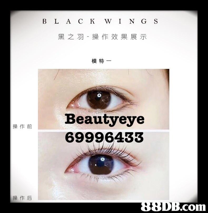 B L A C K W I N G S 黑之羽-操作效果展示 模特- Beautyeye 69996433 操作前 操作后 .com  eyebrow,eyelash,face,eye,close up