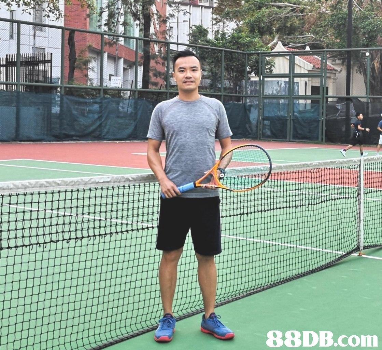 rackets,racket,tennis,tennis court,racquet sport