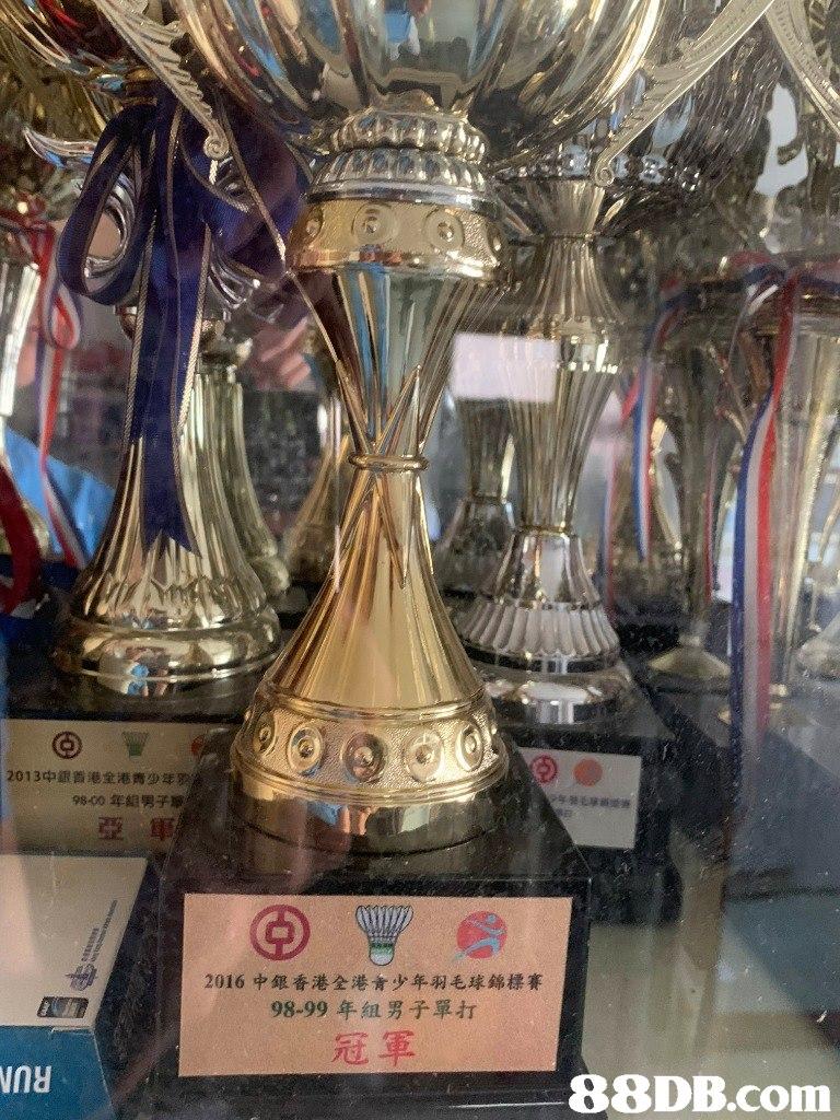 2013中銀香港全港青少年 98-00年組男子 亞軍 2016中銀香港全港青少年羽毛球錦標賽 98-99年組男子單打 冠軍   trophy