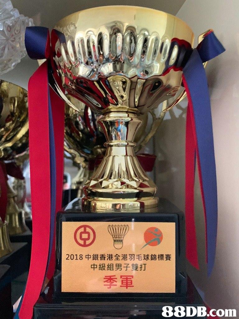 2018中銀香港全港羽毛球錦標賽 中級組男子雙打 季軍   trophy,award