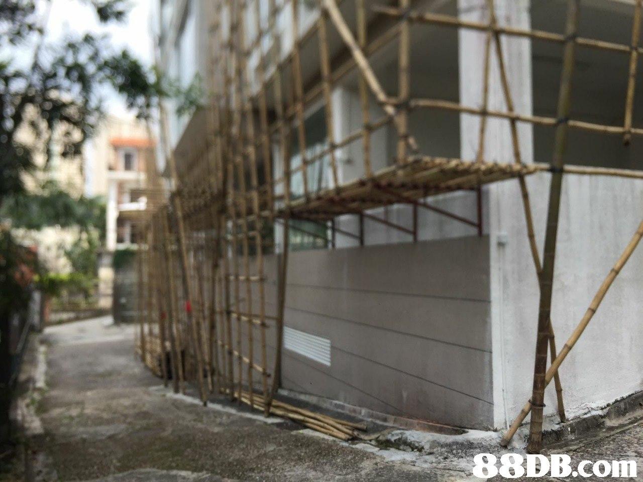 building,facade,