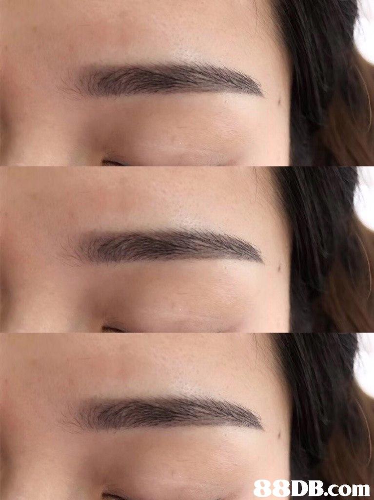 8 DB.com  eyebrow,chin,nose,forehead,cheek