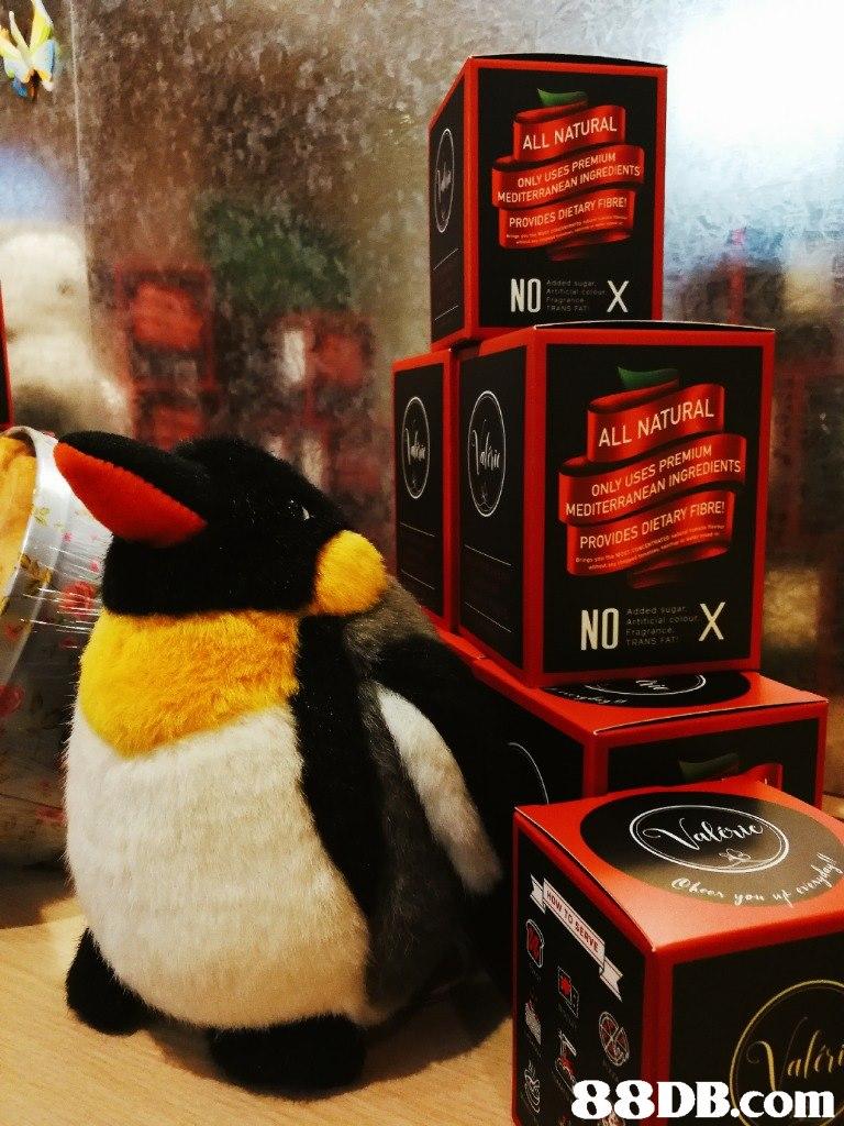 ALL NATURAL ONLYUSN INGREDIENTS EDITER PROVIDES DIETARY FIBRE NO dded sugar ALL NATURAL ONLY USES PREMIUM EDITERRANEAN INGRED ETARY FIBRE PROVIDES Added ugar TRANS FAT hi   flightless bird