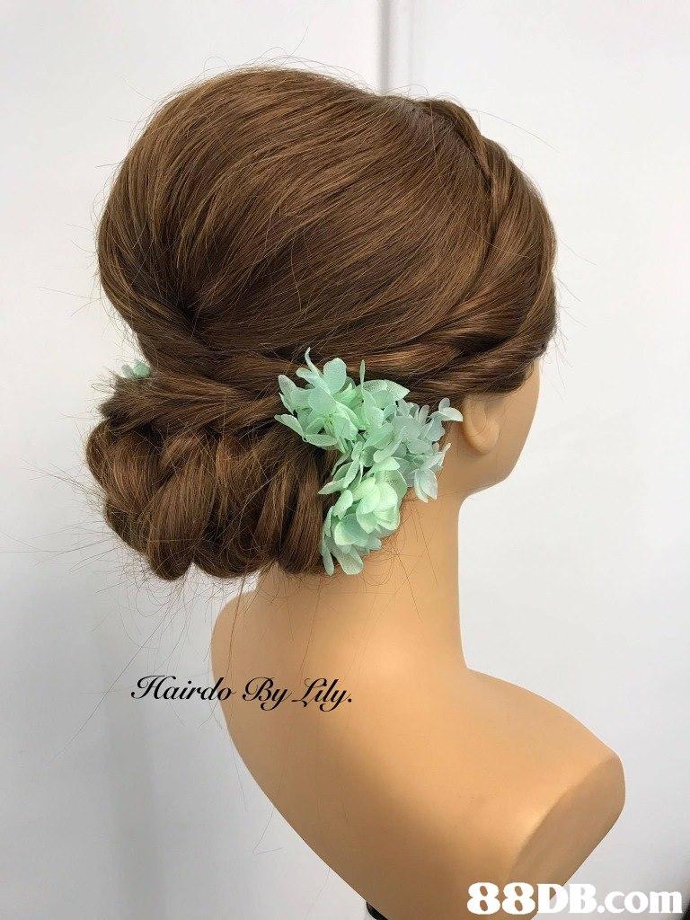 hair,hairstyle,flower,headpiece,hair accessory