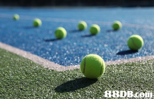 ball game,grass,tennis equipment and supplies,sport venue,tennis ball