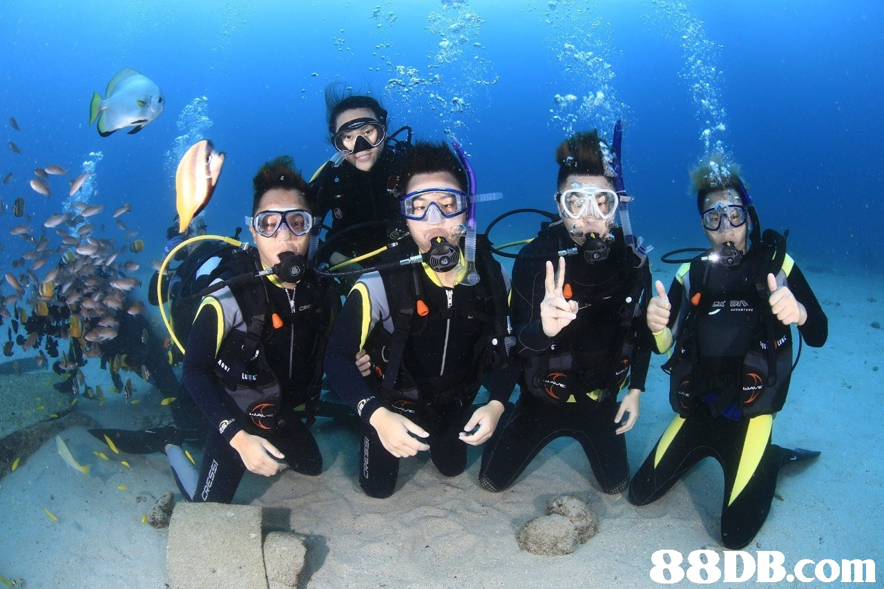 LUNG   scuba diving,divemaster,underwater diving,diving equipment,dry suit