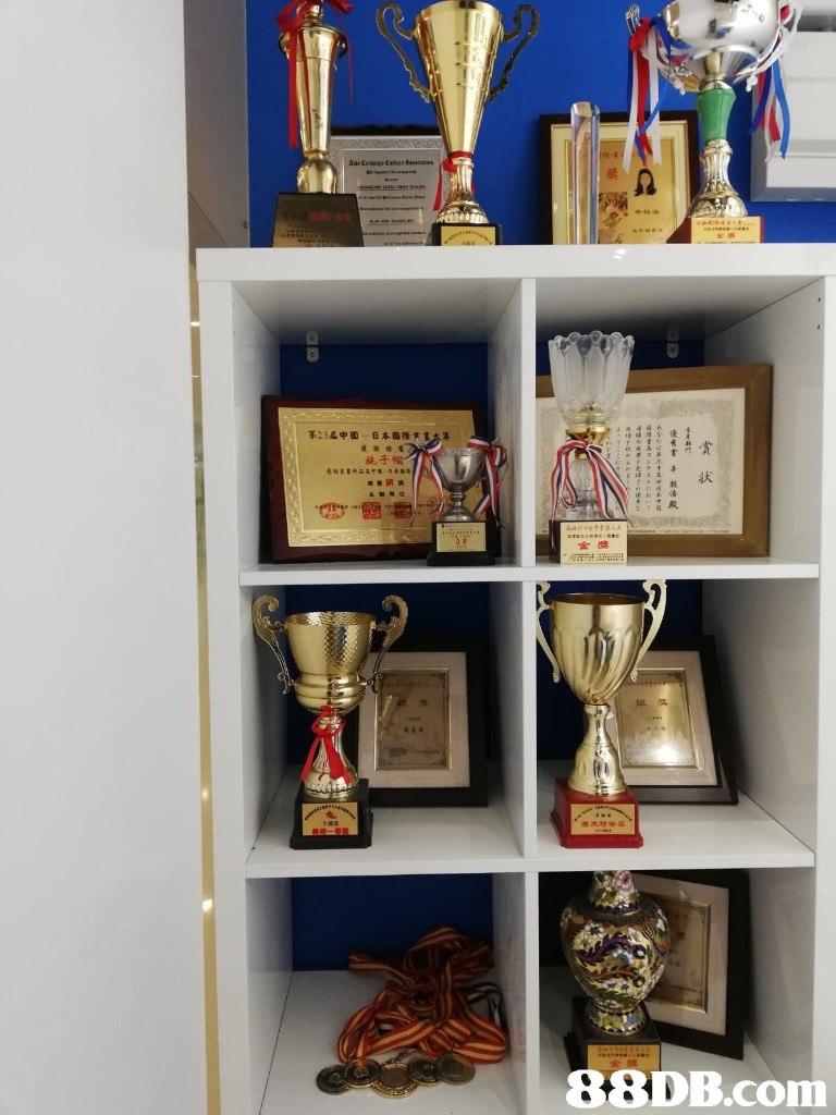 茦23屆中國 日本國際卞1 最禁倦t 施子 状 鋕 殿 金獎   shelving,shelf,furniture,bookcase,trophy