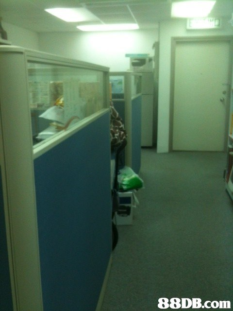 green,property,room,floor,product