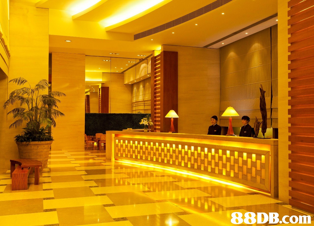 lobby,yellow,interior design,lighting,ceiling